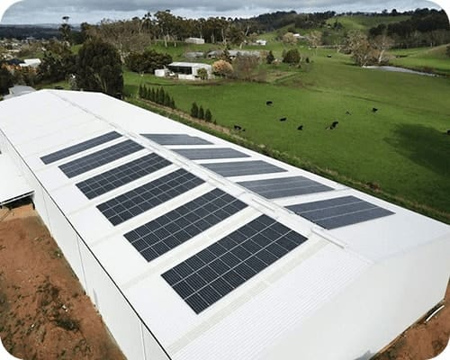 Commercial Solar Project  Australian Pure Fruits SA
