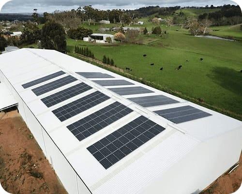 Commercial Solar Project  Australian Pure Fruits SA